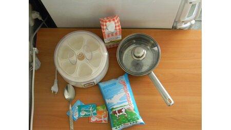 Какие продукты использованы в рецепте - Домашний йогурт, пошаговое фото 0