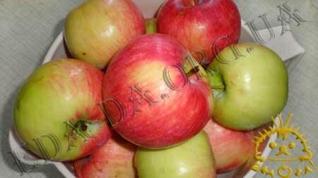 Кулинарные рецепты блюд с фото - Яблочный компот (консервированный), пошаговое фото 1